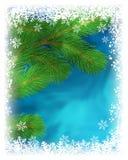 Winter greeting card. Royalty Free Stock Image