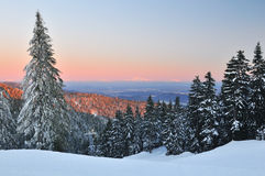 Winter at Grouse Mountain Stock Photography