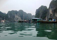 Winter in Halong-Bucht, Vietnam, Asien Stockfotografie
