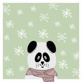 Winter hand drawn panda in scarf. Snowflake. S backdrop Royalty Free Stock Image