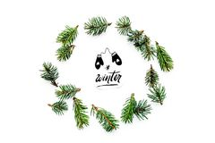 Winter hand lettering with mittens icon. Winter pattern with spruce branches on white background top view pattern Stock Images