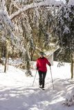 Winter happy woman walking in snow outdoors nature royalty free stock photos