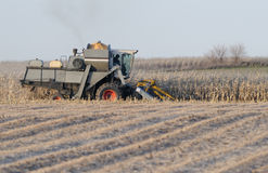 Winter harvest. Combine harvests grain crops during winter in midwestern United States Stock Photography