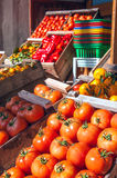 Winter harvest in Uruguay Royalty Free Stock Photo