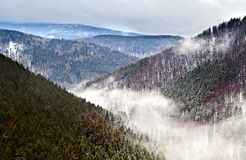 Winter in Harz mountains. Fog in winter Harz mountains, Germany, view from Ilsestein Stock Photos