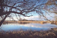 Winter at Havel river in Havelland Brandenburg Germany Stock Image