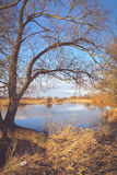 Winter at Havel river in Havelland Brandenburg Germany Stock Photo