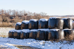 Winter hay bales in snow on a farm Stock Photo