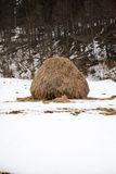 Winter haystack in Carphatian mountains, Romania Stock Images