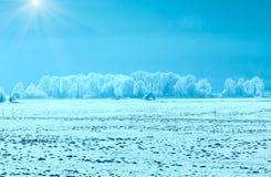 Winter hazy and sunshiny landscape. Winter hazy and sunshiny country landscape with wooden shed Austria Stock Photography