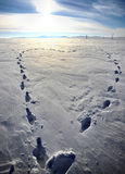 Winter heart. A heart made by foot steps in the snow - copy space Stock Images