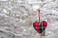 Winter heart Stock Image
