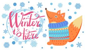Winter is Here Poster with Fox Vector Illustration. Winter is here poster with title and lots of snowflakes, image of fox wearing blue knitted sweater vector Royalty Free Stock Image