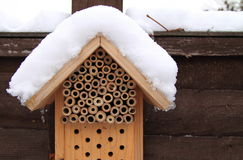 Winter hibernation insect box. Nesting and hibernating box for insects and bugs. Close up in winter with snow Stock Images