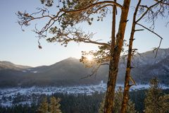 Winter High mountain landscape. Mountains panoramic landscape. Pine forest stock image