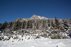 Winter on high mountains Royalty Free Stock Image