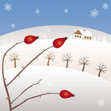 Winter Highlands. Vector illustration. Highlands and winter time Stock Photos