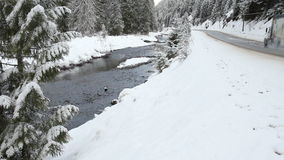 Winter Highway, Manning Park, BC stock video