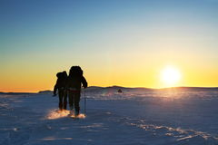 Winter hike. Hike in the winter mountains Stock Photography