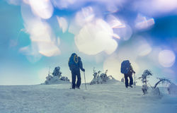 Winter hike Royalty Free Stock Photo