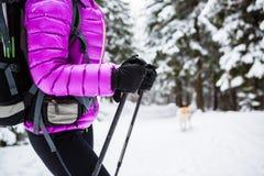 Winter hike in white woods Stock Photo