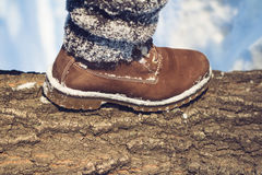 Winter hike in the wilderness Royalty Free Stock Image