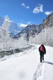 Winter Hiker. Lone hiker on river trail in snowcovered alpine valley Royalty Free Stock Photo