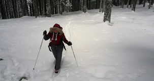Winter hiker in snowy forest stock footage