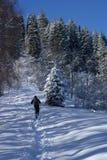 Winter hiking. Men hiking in mountain winter Royalty Free Stock Photos