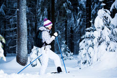 Winter hiking Stock Photos