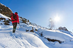 Winter Hiking. Male trekker walks along a snowy mountain path Royalty Free Stock Photography