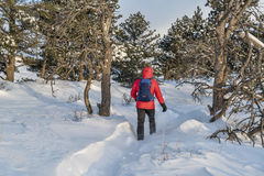Winter hiking in Colorado Stock Photo