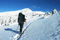 Winter hiking Stock Images