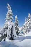 Winter hiking in a mountain forest in the snow stock photos