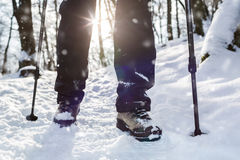 Winter hiking. Royalty Free Stock Image