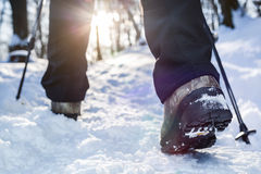 Winter hiking. Royalty Free Stock Photo