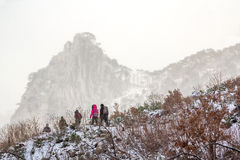 Winter hiking in the mountains. A group of tourists on a winter walk in the high mountains Royalty Free Stock Photo