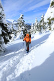 Winter hiking in the mountains on snowshoes Stock Images