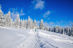 Winter hiking road in mountains with snow Royalty Free Stock Image