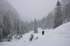 Winter hiking in romania. Winter hiking on   trail  in Romania Stock Photography