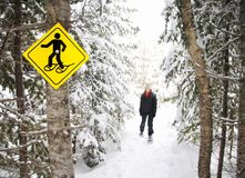 Winter hiking with Snowshoes. Snowshoes. Young woman snowshoeing in pine forest near Baie Saint-Paul, Quebec, Canada Stock Photos