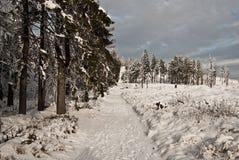 Winter hiking trail near Barania Gora hill in Beskid Slaski mountains Royalty Free Stock Photos