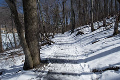 Winter Hiking Trail in Virginia Stock Photo