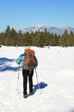 Winter hiking woman Royalty Free Stock Photo