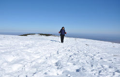 Winter hiking woman. In the snow Royalty Free Stock Photos