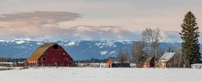 Red Barn and abandoned farm in winter with snow on the ground royalty free stock images