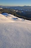 Winter on a hillside. Royalty Free Stock Image