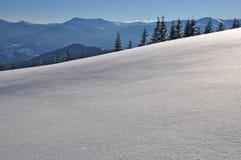 Winter on a hillside Stock Photos