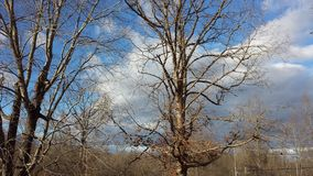 Winter-Himmel 3 lizenzfreie stockbilder