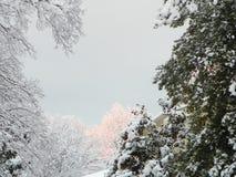 Winter-Himmel mit Schnee stockbild